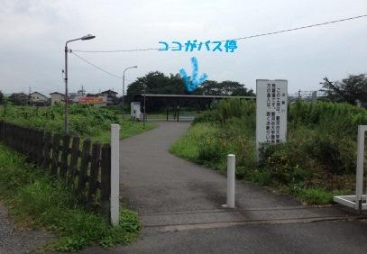 20130927_03.jpeg